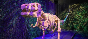 LEGO Creations: The Art of the Brick at Dallas' Perot