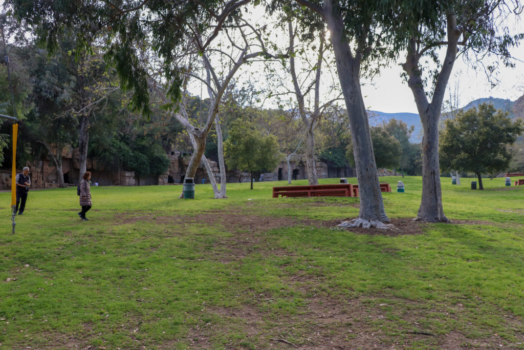 picture of Griffith park picnic area