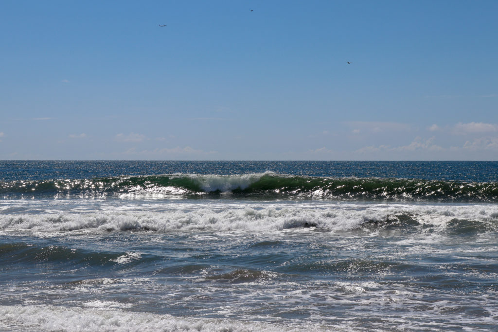 picture of santa monica state beach